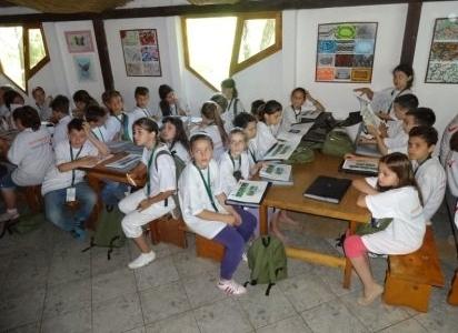 GREEN SCHOOL TÁBOR – ÚJVIDÉK, KISHEGYES